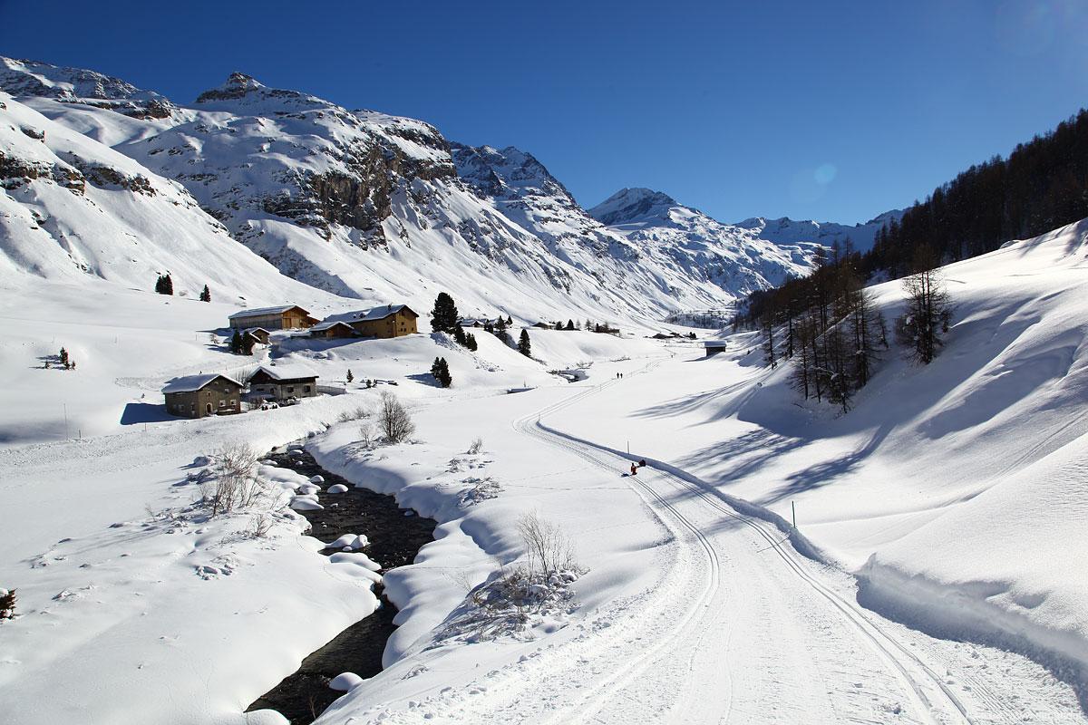 Domenica 17 Febbraio 2019: Val Fex sentiero innevato